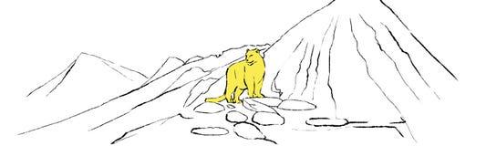 Leopard auf einem Berg Stockfoto