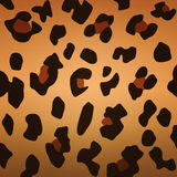 Leopard background Stock Photos