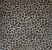 Leopard Background. Fabric in imitation leopard print royalty free stock photo