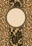 Leopard background and lacy ribbon Stock Photos