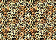 Leopard background. Leopard skin seamless pattern texture Royalty Free Stock Photo