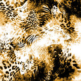 Leopard background Stock Images