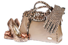 Leopard bag, shoes and gloves stock photo