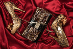 Leopard bag and shoes  lying on red  fabric Royalty Free Stock Images