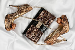 Leopard bag and shoes  lying on white  fabric Royalty Free Stock Images