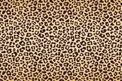 Leopard beige brown spotted fur texture. Vector. Illustration Royalty Free Stock Photos