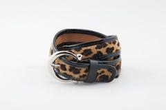 Leopard belt Stock Image