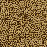 Leopard-Beschaffenheits-Hintergrund-Pelz Lizenzfreies Stockfoto