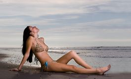 Leopard-Bikini Stockfoto