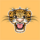 Leopard Cartoon Jaguar Royalty Free Stock Images