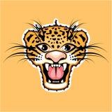 Leopard Cartoon Jaguar Royalty Free Stock Images