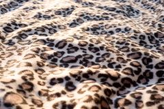 Leopard cat pattern blanket background print. Fur stock photography