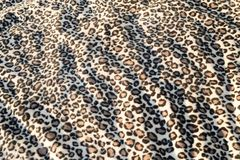 Leopard cat pattern blanket background print. Fur royalty free stock images