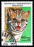 Leopard Cat (Prionailurus bengalensis), Wildcats serie, circa 1986. MOSCOW, RUSSIA - NOVEMBER 10, 2018: A stamp printed in Madagascar shows Leopard Cat ( stock images