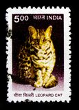 MOSCOW, RUSSIA - OCTOBER 3, 2017: A stamp printed in India shows Leopard Cat (Prionailurus bengalensis), Wildlife serie, circa. MOSCOW, RUSSIA - OCTOBER 3, 2017 royalty free stock photography