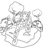 Leopard coloring page Stock Images