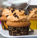 Leopard cupcake Royalty Free Stock Photo
