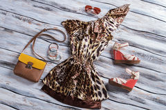 Leopard dress with bicolor purse. Aviator sunglasses and colorful bracelets. New items on showcase. Low prices for designer clothes Stock Photo