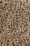 Leopard fabric texture Royalty Free Stock Photo