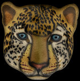 Leopard face Illustration. This is a Leopard face Illustration with clipping path attached Royalty Free Stock Photography
