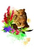 Leopard in flowers on a rainbow of paint drops. stock images