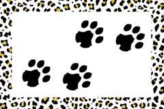 Leopard footprints Stock Photography
