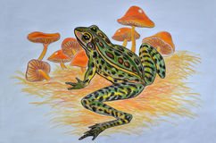 Leopard frog and mushrooms. Pastel drawing of leopard frog and mushrooms Stock Photo