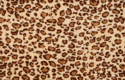 Leopard fur as background Royalty Free Stock Photo