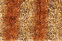 Leopard fur background Stock Images