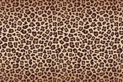 Leopard fur beige brown texture with dark border. Vector. Illustration Stock Image