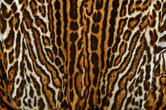 Leopard fur coat background Stock Image