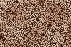 Leopard fur horizontal texture. Vector. Animal leopard fur horizontal texture. Vector illustration Royalty Free Stock Image