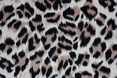 Leopard fur texture for design Royalty Free Stock Images