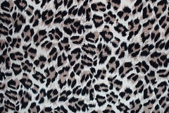Leopard fur texture for design Stock Photos