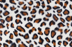 Leopard fur Stock Images