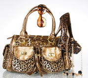 Leopard handbag,shoe,sunglasses and gold necklace Stock Photos