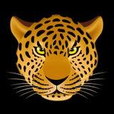 Leopard head Royalty Free Stock Image