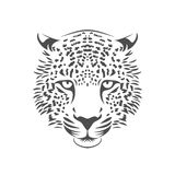 Leopard head illustration. One color. Stock Images