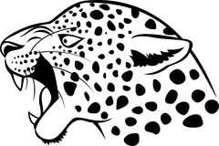 Leopard head tattoo Stock Image