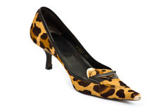 Leopard high heeled shoe Royalty Free Stock Image