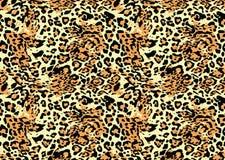 Leopard-Hintergrund Lizenzfreies Stockfoto