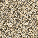 Leopard-Hintergrund Stockbilder