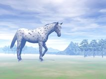 Leopard horse in nature - 3D render. Beautiful leopard appy horse standing in foggy and cloudy rural background by day Royalty Free Stock Photo