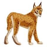 Leopard icon, cartoon style royalty free illustration