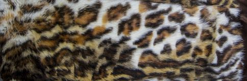 Leopard, Jaguar fur with stained on skin texture, close up.  stock image
