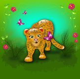Leopard in jungle Royalty Free Stock Image