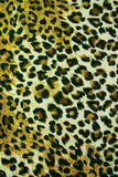 Leopard leather pattern texture background Stock Images