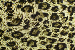 Leopard leather pattern texture closeup Royalty Free Stock Photos