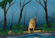 A leopard in the middle of the forest stock illustration