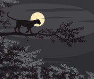 Leopard moon. EPS8 editable vector cutout illustration of a leopard on a tree branch silhouetted against the moon at night Royalty Free Stock Image
